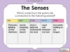 Using the Senses (KS1 Poetry Unit) Teaching Resources (slide 13/59)